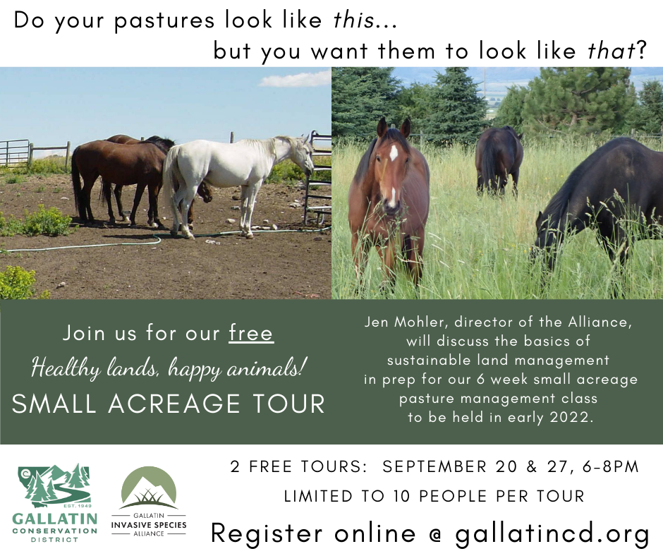 """2nd """"Healthy Lands, Happy Animals! Small Acreage Tour"""" With Jen Mohler, GISA @ North of Belgrade, MT"""